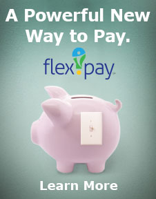FlexPay: The Power to Pay Your Way